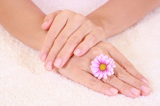 розовый цветов на руке