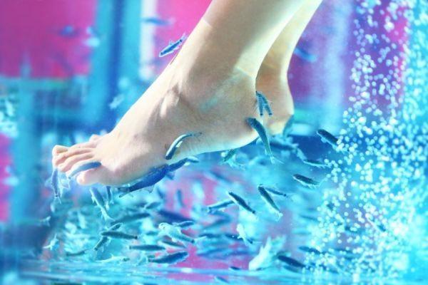 обработка рыбками ступней