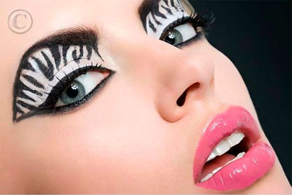 zebra make up