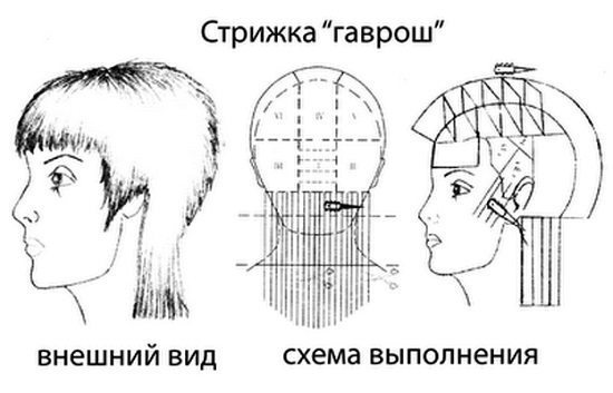 схематичный рисунок инструкция