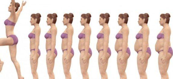 эволюция веса