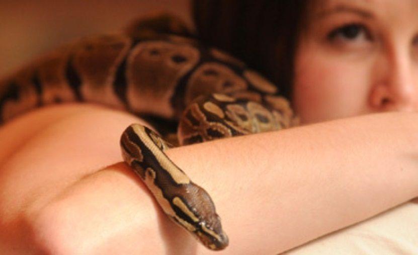 терапия с рептилиями