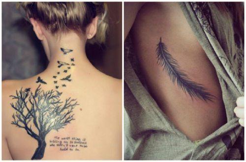 рисунок с птицами и деревом и пера