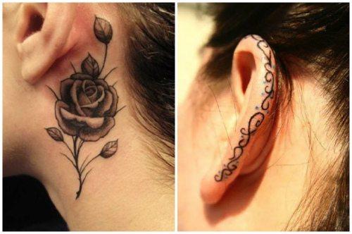 роза и орнамент
