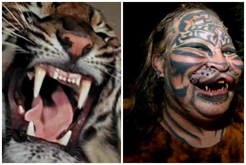 губы тигра