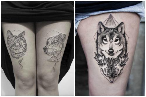 кот и собака, и волк