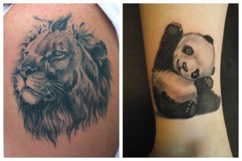 Величественный лев и добрая панда
