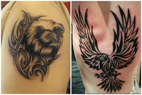 медведь и орел