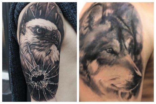 Орел и волк блэк энд грэй