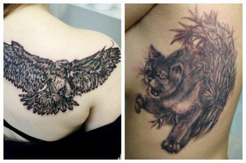 Птица и кошка на женском теле