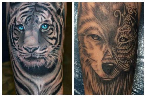 Тигр и волк на руке