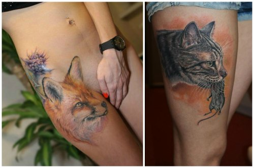 лиса и кошка