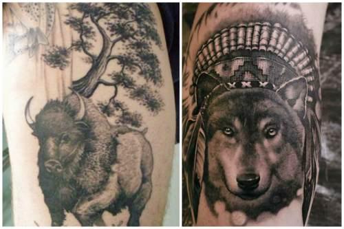 Бизон и волк