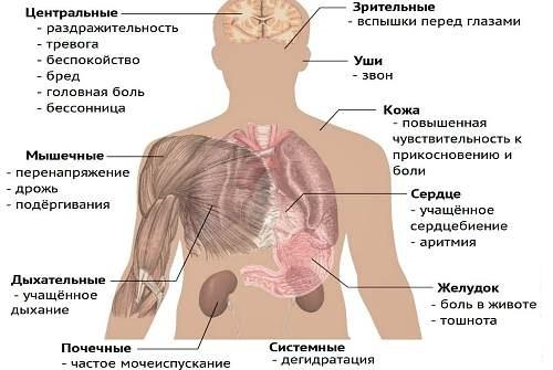 симптомы передозировки кофеином
